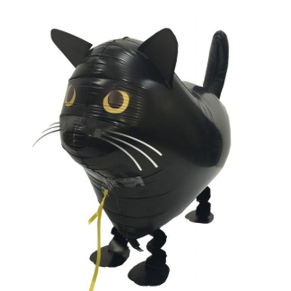 dlouhá černá péro těsně bílá kočička